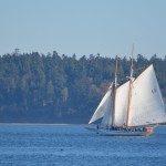 sailboat windermere web